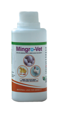 REDO-VET Anti Inflammatory Herbal Powder
