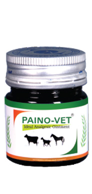 PAINO-VET Ideal Analgesic Ointment